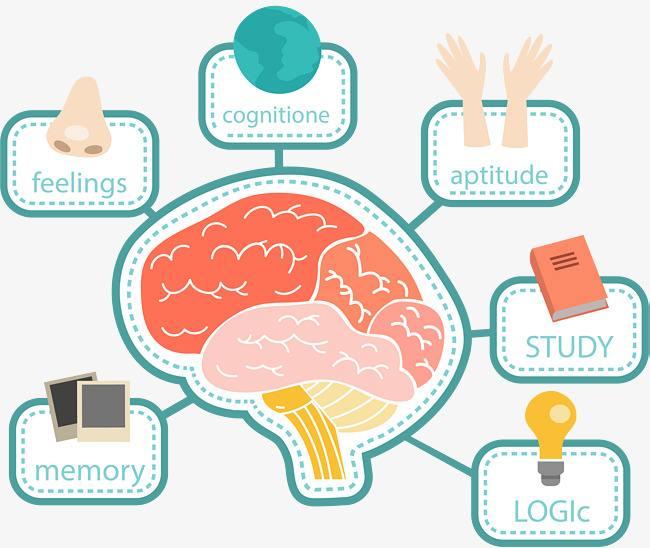 思维导图APP开发有哪些功能?